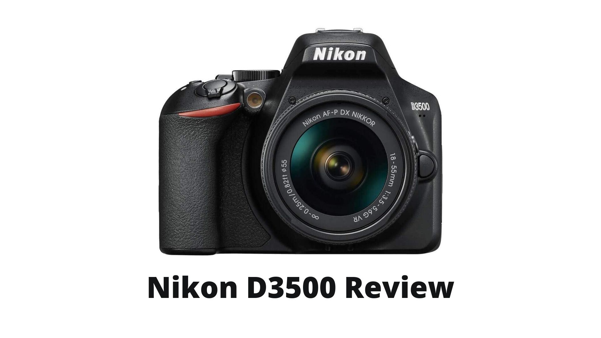 Read more about the article Nikon D3500 Review 2021 | Is it the Best  Camera for Beginners?