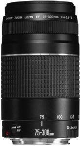 75-300mm Canon Lens Sample Photos
