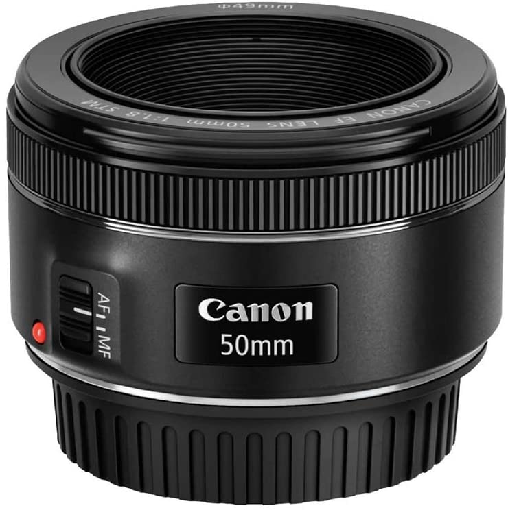 canon 50mm 1.8 sample images
